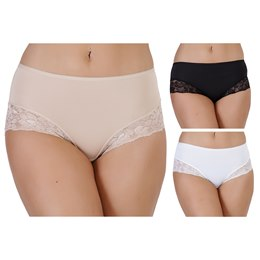BR336 LADIES FULL BRIEF WITH LACE