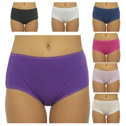 BR354 LADIES 5 PACK MIDI BRIEFS IN POLYBAG